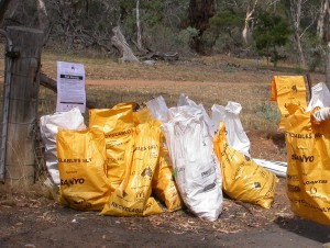 Clean-up Australia bags